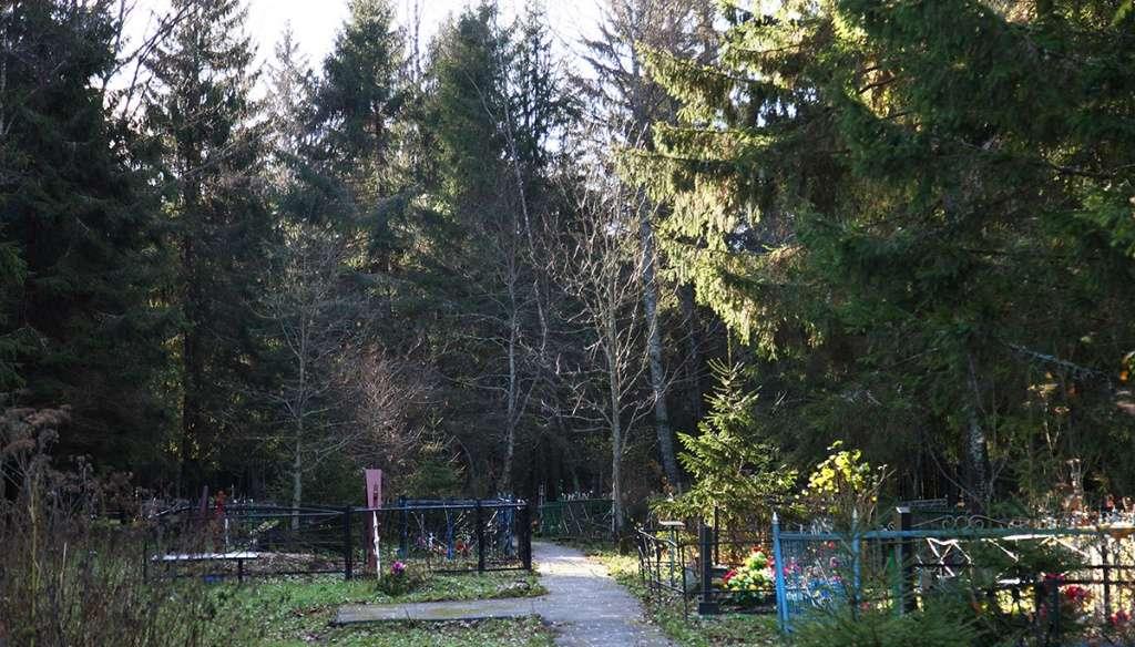 Васюнино кладбище